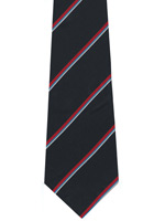 Royal Naval Association striped tie