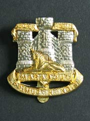 Devon and Dorset Regiment Cap Badge