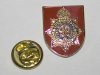 Lapel badge showing its safety catch