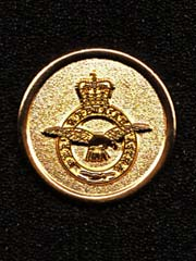 Royal Air Force gold coloured lapel badge