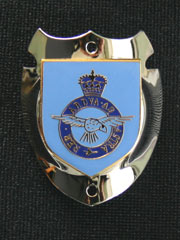 RAF Crested Walking Stick Badge