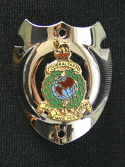 Royal Marines Walking Stick Badge