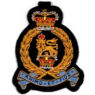 Adjutant Generals Corps Wire Blazer Badge