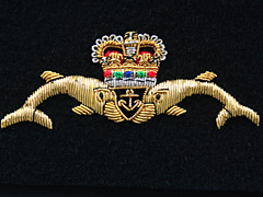 Submariners Dolphins Blazer Badge