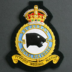 146 Squadron RAF wire blazer badge