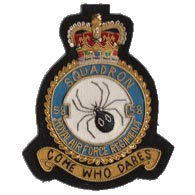 58 Squadron RAF wire blazer badge