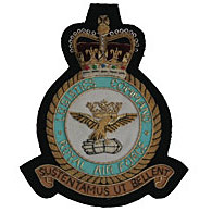 RAF Logistics wire blazer badge