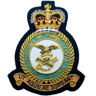 RAF Personnel Training Command wire blazer badge