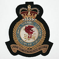 RAF Technical Training Command wire blazer badge