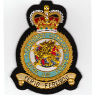 RAF Transport Command wire blazer badge