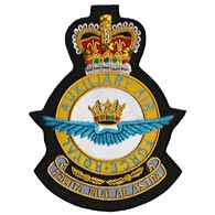 Royal Auxiliary Air Force Wire Blazer Badge