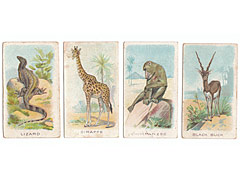 Wills Animals and Birds, 1900, 4 animals cigarette cards