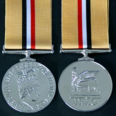Iraq 2003 Gulf War Medal Copy Image 2