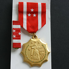 USA Philippines Defense Medal Image 2