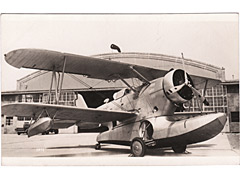 Grumman J2F Duck Photo Postcard