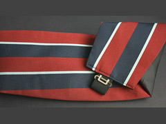 Royal Air Force Cummerband