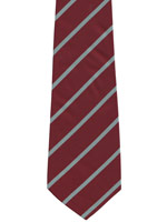 Duke of Wellingtons Regiment blue striped tie