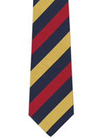 RAMC Medical Corps wider striped tie