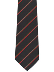 Royal Regiment of Wales Striped Tie