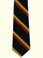 Royal Norfolk Regiment striped tie