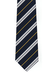 RASC striped tie