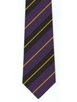 London School of Economics striped tie