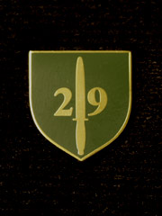 29 Commando boxed Lapel Badge