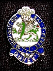 2nd Battalion The Queens Regiment lapel badge