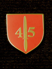 45 Commando boxed Lapel Badge