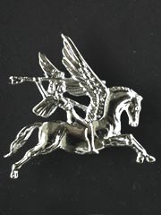 Airborne regiment silver lapel badge