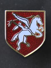 Airborne Regiment lapel badge