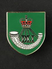 Durham Light Infantry lapel badge