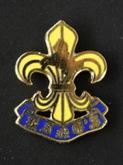 Kings Regiment lapel badge