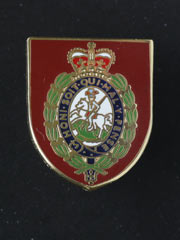 Northumberland Fusiliers lapel badge