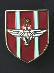 Parachute regiment lapel badge