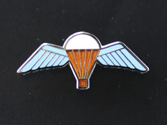 Parachute regt wings lapel badge