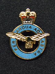 RAF cutout lapel badge