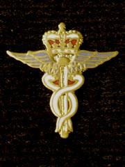 RAF medical corps lapel badge