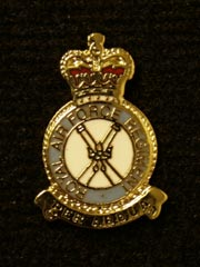RAF Regiment Lapel Badge