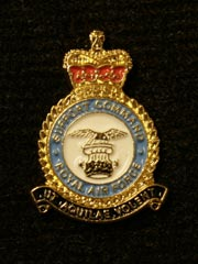 RAF Support Command Lapel Badge