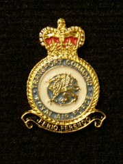 RAF Transport Command Lapel Badge