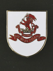 West Riding Regiment lapel badge