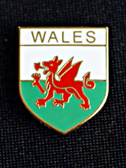 Welsh Flag Lapel Badge