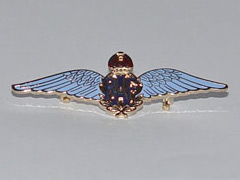 RAF Wings enamel badge