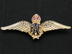 RAF wings (gilt) lapel badge
