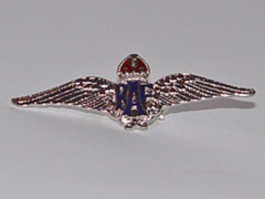 RAF Wings shiny silver badge